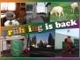 Fruehling-is-back-16_10_2010-23_10_2010