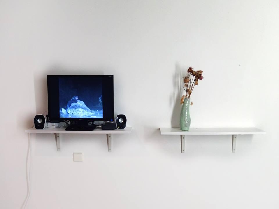 """""""Official Office"""" – internationale Videokunst auf kleinem Raum (Review)"""